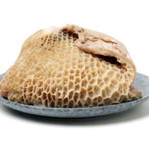 Beef Honeycomb-1900