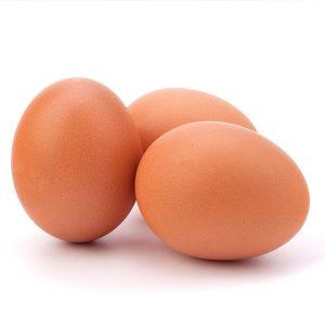 鮮雞蛋#7
